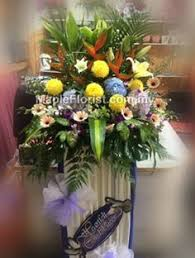 flowers delivery express flower is the most symbol of expressing emotion online