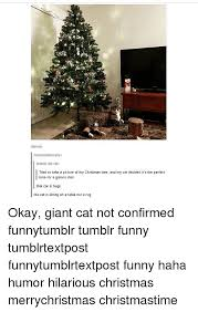 Christmas Memes Tumblr - 25 best memes about hilarious christmas hilarious christmas memes