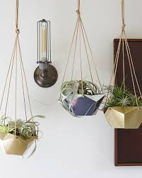 w u0026d for target diy hanging air plant containers wit u0026 delight