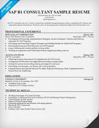 Sap Abap Sample Resume by Example Of A Consultant Resume A Supposedly Fun Thing I Sap Abap