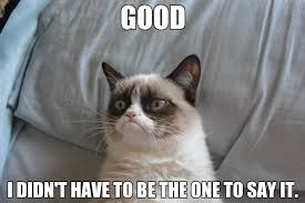 Grumpy Cat Friday Meme - image 457792 grumpy cat know your meme