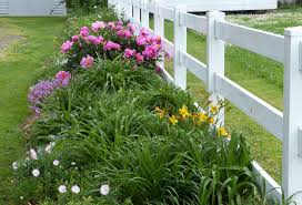 Planning A Flower Garden Layout Flower Garden Ideas May Bloom Pictures Flower Borders Made