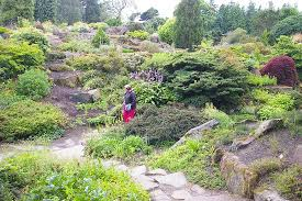 Scottish Rock Garden Forum Rock Garden Picture Of Royal Botanic Garden Edinburgh Edinburgh
