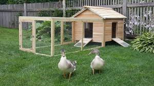 hand crafted cedar duck hutch chicken coop by lyons woodworking