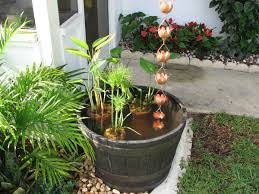 papyrus water plant fun garden pond with rain chain coming down
