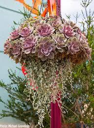 zylstra china1800 fruit bouquets the seaworld 50th anniversary micechat celebration
