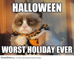 Halloween Cat Meme - photo gallery halloween cats happy holidays