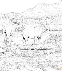 wild west coloring pages at western coloring pages eson me
