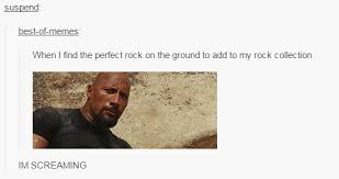 Add Memes To Pictures - when i find the perfect rock on the ground to add to my rock