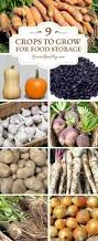 1096 best images about organic gardening fruits vegetables