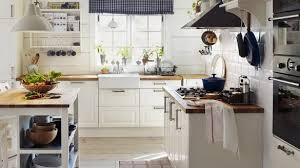 Ikea Kitchen Cabinet Ideas Ikea Kitchen Cabinets Reviews Review Ideas Design 15