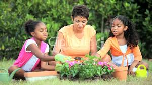family gardening little african american girls gardening with mom royalty free