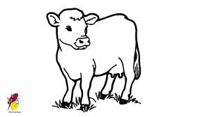 cow easy drawing how to draw a cow youtube