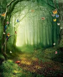 tale butterfly nature photography digital backdrop cloth