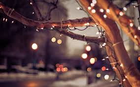 white tree lights wallpapers happy holidays