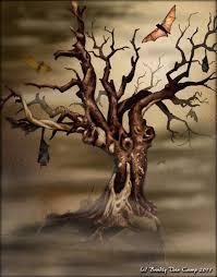 kanapan terror bats circiling dead oak tree