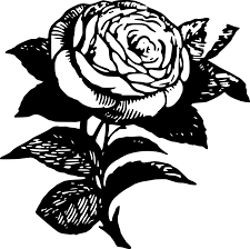 simple rose coloring page free here