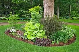 Trees Backyard Flower Garden Ideas For Around Trees Design Home Design Ideas