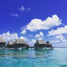 holidays in an overwater bungalow in tikehau u2026 travel