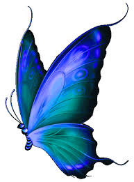 Blue And Green Butterfly - national wear blue green day 2015 ophthalmology update