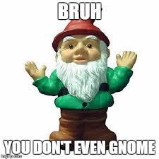 Gnome Meme - bruh really imgflip