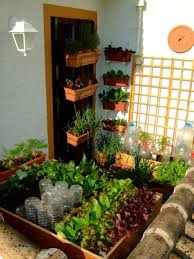 this tiny balcony vegetable garden only uses 3 square yards of