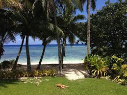 niki u0027s beach house 3 bedroom beach front home in arorangi white