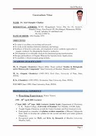 resume format for lecturer post in engineering college pdf file resume format for assistant professor in engineering college best