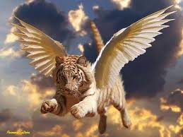 tiger with wings tigers tigers and creatures