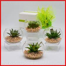 vasi in vetro economici piante grasse finte con vasi vetro novita matrimonio