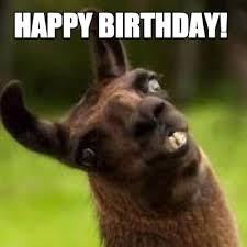 Happy Birthday Meme Creator - meme creator happy birthday meme generator at memecreator org