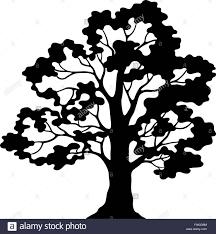 Oak Tree Drawing Oak Tree Pictogram Black Silhouette Stock Photos U0026 Oak Tree
