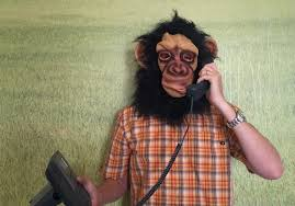 about monkey phone call