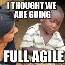 Agile Meme - full agile i thought we are going on memegen