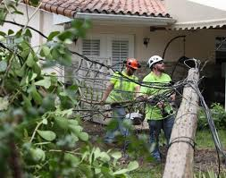 Fpl Outage Map Irma Aftermath 99 Percent Of Power Restored In South Florida Fpl