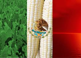 Mexixan Flag Mexican Flag Wallpaper On Markinternational Info