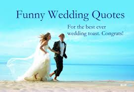 great wedding sayings wedding quotes for the best wedding toast jpg