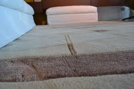 tappeti doccia gallery of box doccia in plastica tappeto grigio moderno