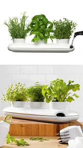 unique indoor planters indoor herb planter interior design ideas