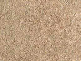 beige colour 80 20 wool carpet 40oz twist pile biscuit beige colour heavy