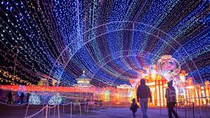 magical winter lights gulf greyhound park arts family events