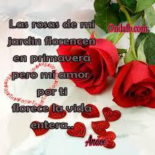 imagenes para enamorar con flores frase bonita para enamorar con fondo de rosas imagenesdeamor