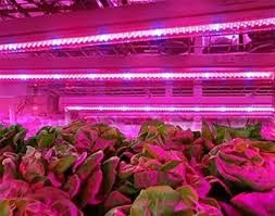 horticultural led grow lights led grow l pcb horticulture lighting manufacturers and suppliers