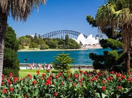 Garden Botanical Royal Botanic Garden And The Domain Sydney Australia Official