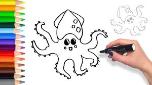 learn how to draw a squid teach drawing coloring page youtube