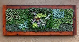 best of succulent decorating ideas landscape eclectic with