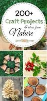 145 best pine cone craft ideas images on pinterest pine cone