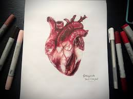 realistic human heart speed drawing magato youtube