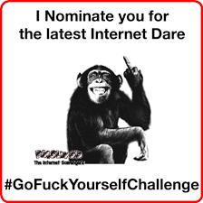 Meme Fuck - go fuck yourself challenge funny sarcastic meme pmslweb