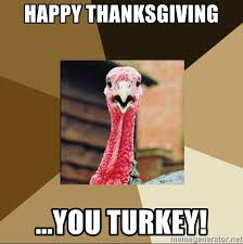 Thanksgiving Turkey Meme - happy thanksgiving you turkey quirky turkey meme generator
